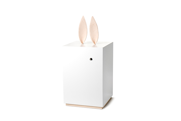 Rabbit Boxes